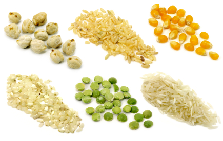 Why No Grains & Legumes (and Nuts?): Phytates