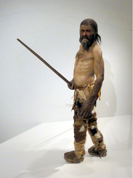 otzi the 5 300 year old glacier mummy was not paleo. Black Bedroom Furniture Sets. Home Design Ideas